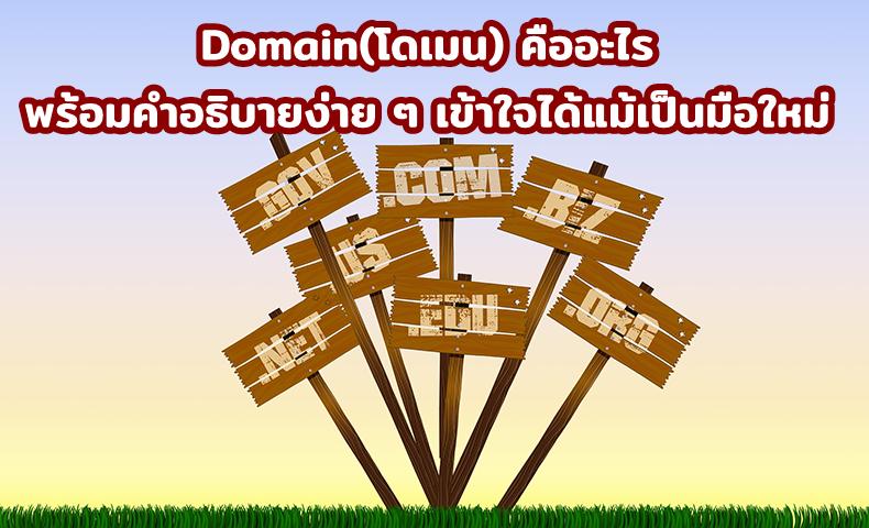 Domain(โดเมน) คืออะไร พร้อมคำอธิบายง่าย ๆ เข้าใจได้แม้เป็นมือใหม่