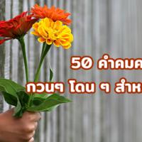 50 คำคมความรัก กวนๆ โดน ๆ 2563 สำหรับคู่รัก