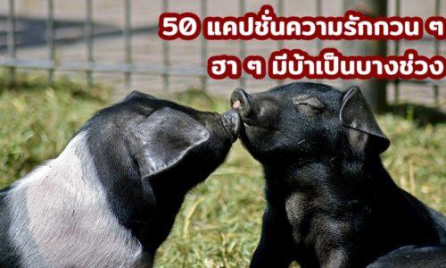 50 แคปชั่นความรักกวน ๆ ฮา ๆ มีบ้าเป็นบางช่วง