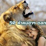 50 คำคมฮาๆ ตลก เสี่ยวๆ 2563